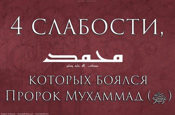 4 слабости, которых опасался Пророк Мухаммад (ﷺ)