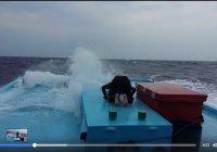 Эпичное видео намаза посреди бушующего океана