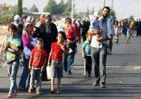 Беженцы в Ираке платят по $500, чтобы уйти от ИГИЛ