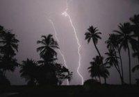 В Индии  от ударов молний погибли люди