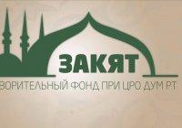 День краудфандинга в России: «с миру по нитке»