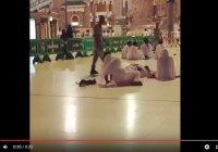Котенок из Запретной мечети помог хаджию не проспать намаз