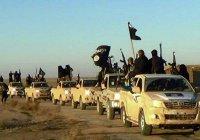 США подсчитали доходы террористов ИГИЛ
