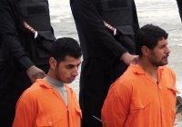 Боевик ИГИЛ казнил собственного брата