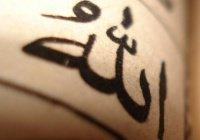 """Что значит """"Аллах раскрывает грудь""""?"""