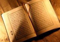 6 аятов Корана о том, как стать богаче