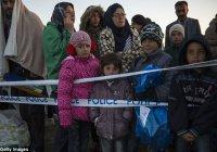 В Германии мигрантам запретят многоженство