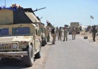 Подсчитаны потери ИГИЛ в освобожденной Эль-Фаллудже