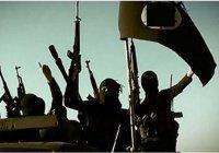 """О теоретических моделях """"Исламского государства"""""""