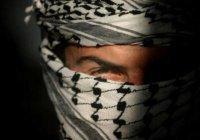 Истинная причина экстремизма или почему ислам не имеет отношения к насилию?