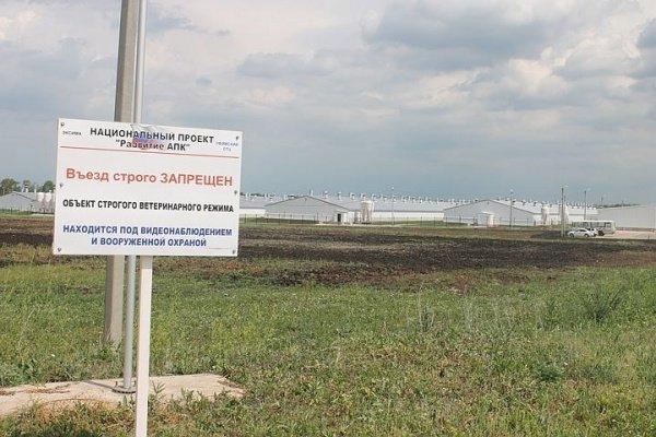 Свинокомплекс в Башкортостане.