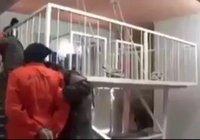 ИГИЛ казнит дезертиров с помощью кипятка