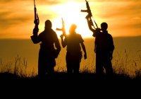ООН: десятки тысяч иностранных наемников ИГИЛ возвращаются на родину