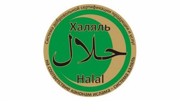 Халяльные поликлиника и санаторий появятся в Татарстане