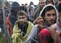 Половина немцев хочет, чтобы беженцы покинули Германию – опрос