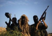 "Математика ""джихада"": война по Google, работа палачом, ампутация, тюрьма"