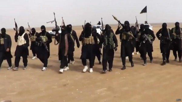 5% террористов имеют самое базовое представление об основах ислама