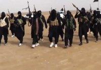Исследование: только 5% террористов ИГИЛ разбираются в исламе