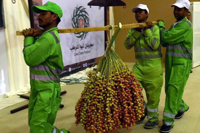 Фестиваль в честь любимого продукта Пророка Мухаммада (ﷺ) (ФОТО)