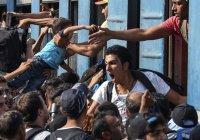 В Сербии беженцы устроили массовую голодовку с требованием впустить их в Венгрию