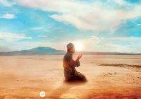 Тот, кто совершит это после омовения, заслужит прощение грехов