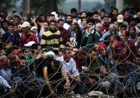 МИД РФ: миграционный кризис в Европе может спровоцировать новые теракты