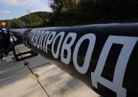 Россия и Турция возобновили переговоры по «Турецкому потоку»