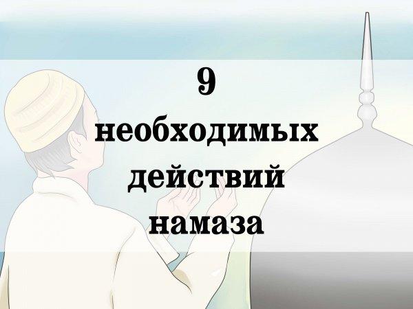 9 необходимых действий намаза