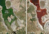 Зеленое озеро в Иране стало красным