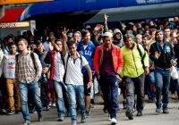 В Норвегии мигрантов штрафуют за пропуск курсов «европейских ценностей»