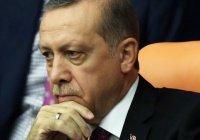 СМИ: Эрдоган извинялся перед Путиным на русском языке