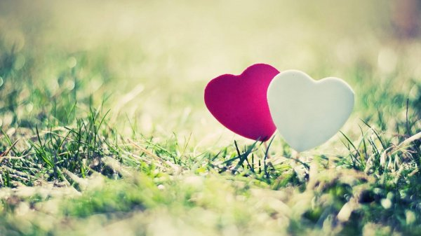 Любовь к вашему избраннику является причиной исполнения обязательств перед Всевышним