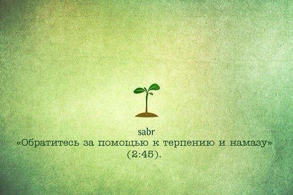 Аллах обещал награду тем кто проявляет терпение