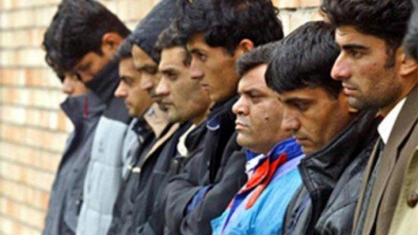 Новосибирские власти ограничили круг специальностей, доступных для мигрантов.