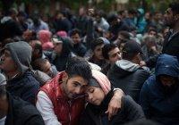 В Германии за шутку про мигрантов фирму лишили госконтракта