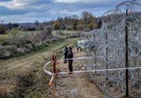 «Чучела для отпугивания беженцев» установили на венгерской границе (Фото)