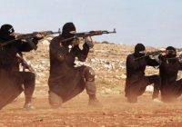 В Ираке казнят 36 боевиков ИГИЛ, устроивших массовый расстрел