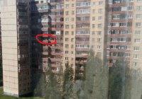 Стали известны подробности спецоперации в Санкт-Петербурге