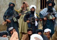Эксперты: талибы могут «раствориться» в ИГИЛ