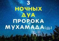 3 дуа, которые Пророк Мухаммад (ﷺ) совершал по ночам
