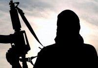В ОАЭ от симпатий к ИГИЛ будут лечить