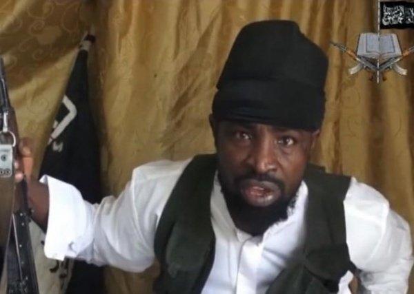 ВВС Нигерии сообщили оликвидации нескольких полевых командиров «Боко Харам»
