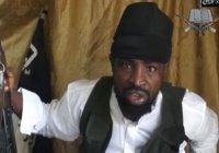 ВВС Нигерии: главарь «Боко Харам» смертельно ранен
