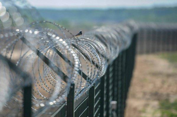 Стена на норвежско-российской границе.