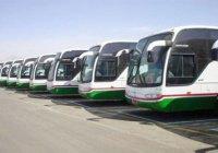 Хаджиев в Мекке будут обслуживать 16 тысяч автобусов