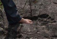 В Китае обнаружены следы людей-гигантов (фотофакт)