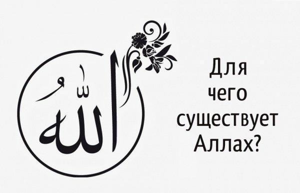 Для чего существует Аллах?