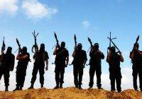 Эксперт: террористов ИГИЛ нельзя называть исламистами