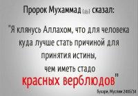 """""""Кто призовет других к истине, то получит вознаграждение тех, кто последует за ним"""""""