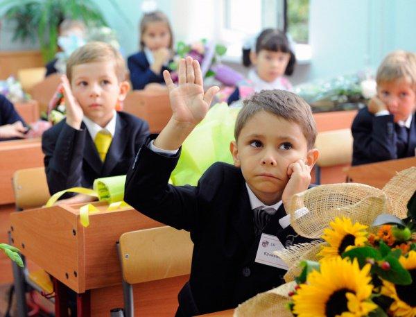 Порядка 90% граждан России одобряют патриотическое воспитание вшколе— Опрос